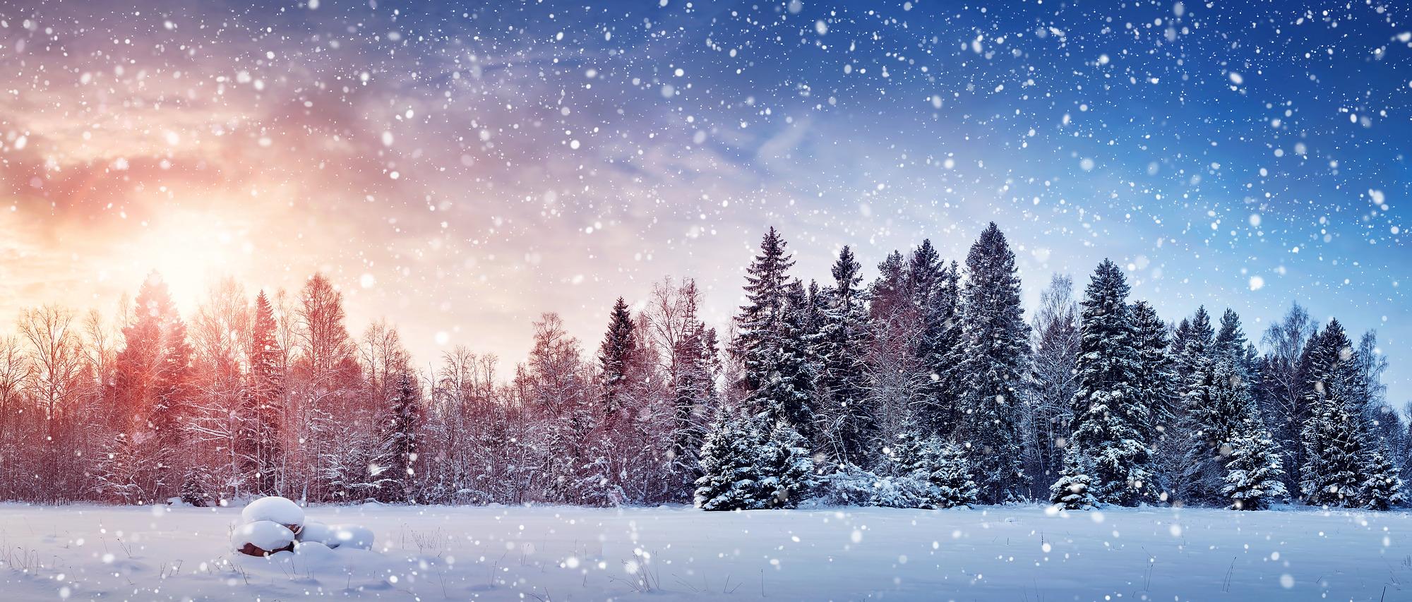 Preventing Colds Amp Depression During The Winter Season Autumn Asphodel