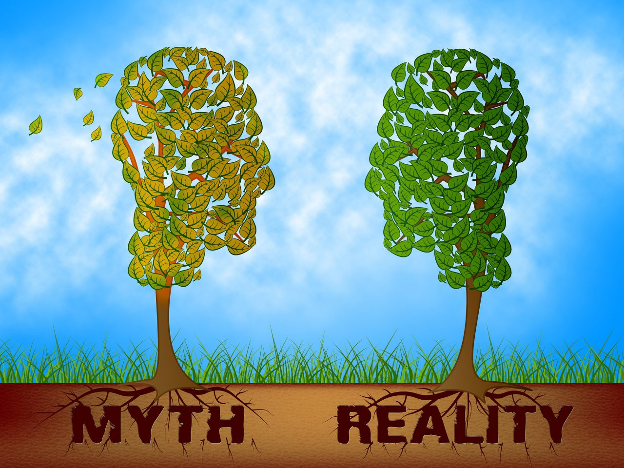 Myth Versus Reality Words Showing False Mythology Vs Real Life