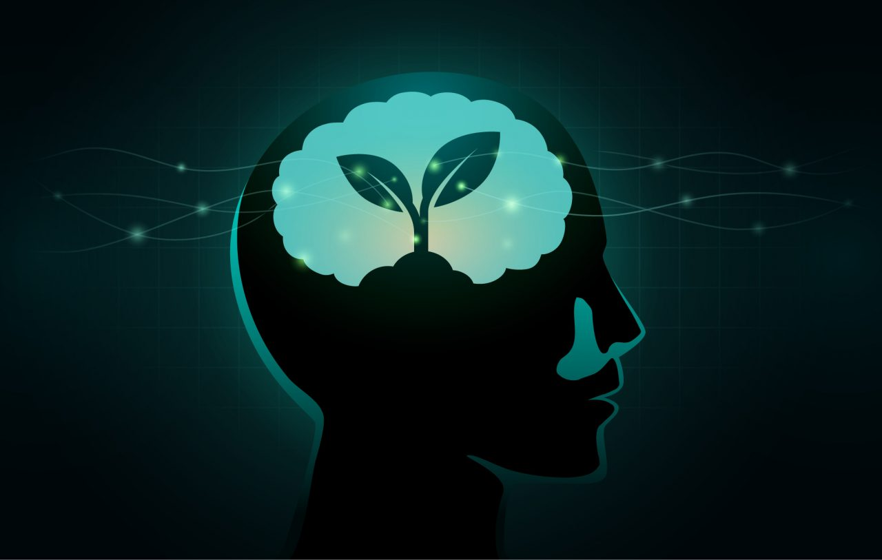 Small Tree growing in human brain.
